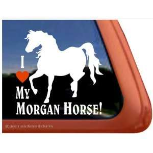 I Love My Morgan Horse Trailer Vinyl Window Decal Sticker