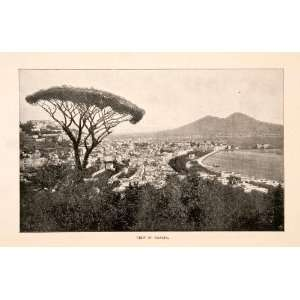 Print Naples Italy Gulf Mountain Vesuvius Phlegraean Capital Peninsula