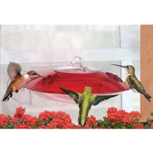 Droll Yankees Window Mount Hummingbird Feeder with Nectar