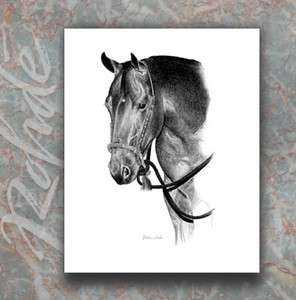 AMERICAN QUARTER HORSE ART western bosal pencil portrait GORGEOUS